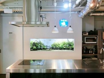 【中野】水槽がある癒やしの空間。憧れのアイランドキッチンも完備!「GUEL SPACE +kitchen」