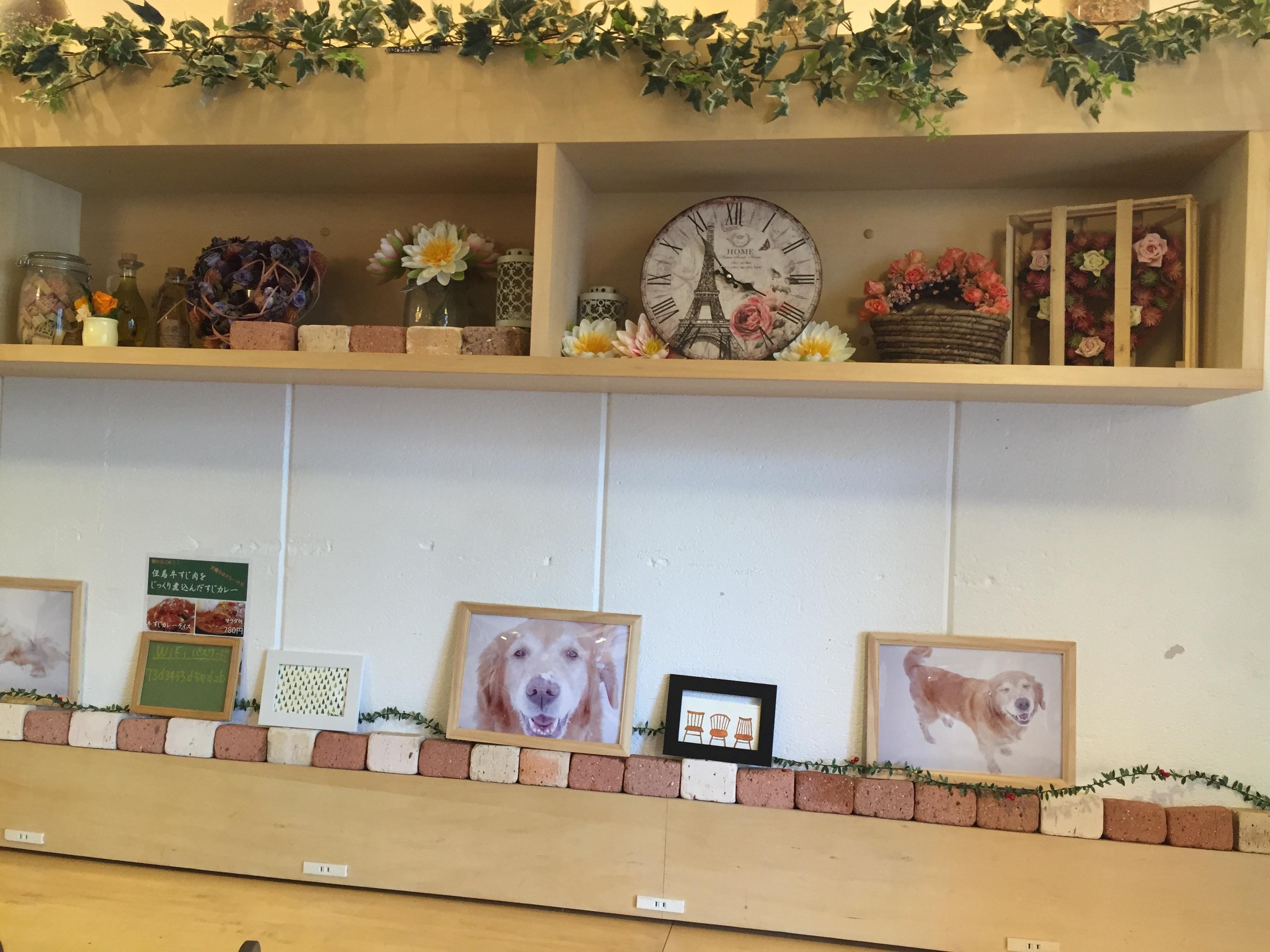 【中目黒】女子会にピッタリな雰囲気と可愛い雑貨が沢山ある「aroma cafe」